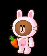 บราวน์กระต่าย