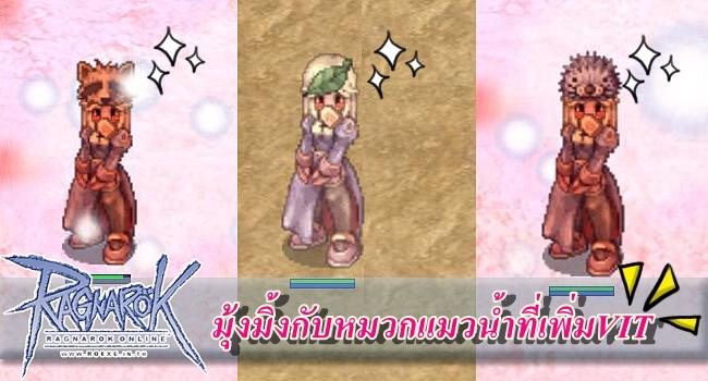 ro-หมวกแมวน้ำ